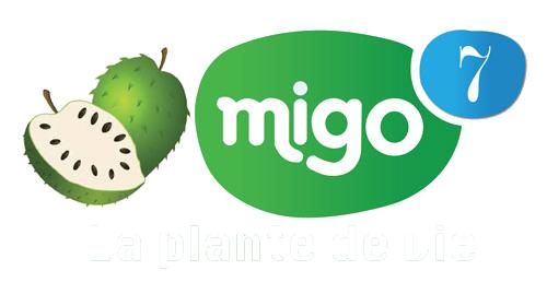 logo-migo7